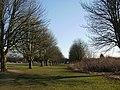 Tree-lined edge of The Glebelands - geograph.org.uk - 1752134.jpg