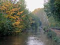 Trent and Mersey Canal near Rugeley , Staffordshire - geograph.org.uk - 1556753.jpg