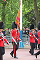 Trooping the Colour, the Colours.jpg
