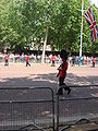 Trooping the Colour 2009 025.jpg