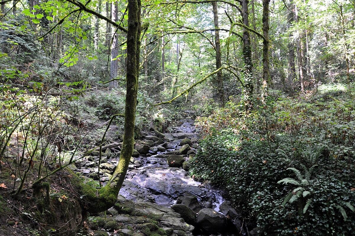 Hiking in portland oregon - 2 part 1