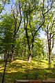 Tuapsinsky District, Krasnodar Krai, Russia - panoramio (104).jpg