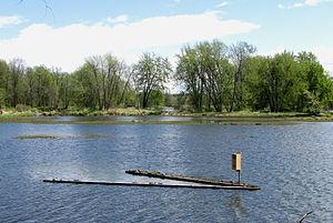 Petrie Island - Turtle Pond