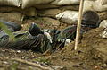 US Navy 040518-N-9693M-001 A Midshipman Plebe takes cover during a simulated amphibious assault as part of Sea Trials.jpg