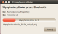 Ubuntu 10.04 bluetooth9.png
