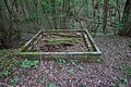 Unidentified structure in woodland2.jpg