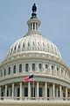 United States Capitol (5946373214).jpg