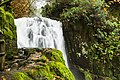 Upper Sweet Creek Waterfalls, Oregon (32333452470).jpg