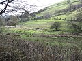 Valley east of Bwlch pen Barras - geograph.org.uk - 1245663.jpg