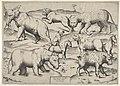 Various Animals MET DP831911.jpg