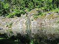 Vatten i slottsskogen, Göteborg 2009 - panoramio.jpg