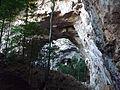 Vegetação na Caverna do Peruaçu.JPG