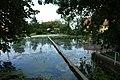 Velká Buková, rybník.jpg