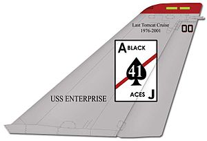 VFA-41 - VF-41 F-14 tail markings