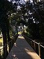 Viana do Castelo (31981532752).jpg
