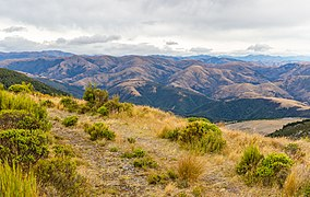 View from Mt Thomas, Mount Thomas Forest Conservation Area, Canterbury, New Zealand 05.jpg
