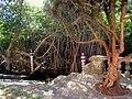 Villa Vizcaya - IMG 8066.JPG