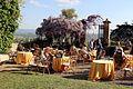 Villa di montalto, giardino 07.jpg