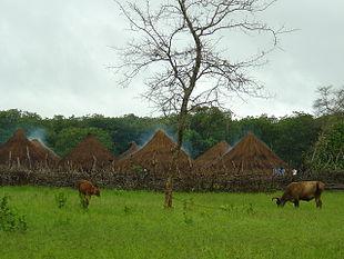 Villaggio rurale tipico.