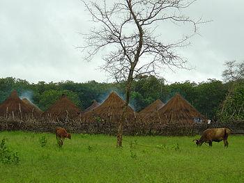 Villaggio nella savana - Bula - Guinea-Bissau