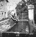 Vodnjak na Robidiščih 1951.jpg