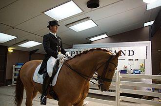 Anders Dahl (equestrian) - Image: WDM Roosendaal 2015 Anders Dahl