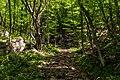 WLE - 2018 - Байдарський заказник - римська дорога в урочищі Карадазький ліс.jpg