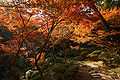 Wakayama Castle Nishinomaru Garden08n4592.jpg