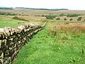 Wall near Askerton Castle - geograph.org.uk - 241116.jpg