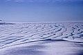 Ward Hunt Island, Ice Shelf 05.jpg