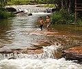 Waterfall Kbal Chhay. Children bathing (recreational).jpg