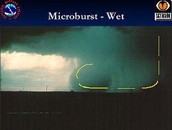 250px-Wetmicroburst.jpg