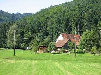Stegen - Meadows and woods at Wittental, part of the municipality of Stegen