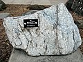 Wollastonite from Willsboro, NY.jpg