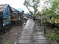 Wooden Walkways (48274802866).jpg