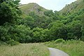 Woods and hills on beside the Manifold Trail - geograph.org.uk - 1408822.jpg