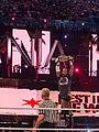 Wrestlemania 28 WWE Champion CM Punk.jpg