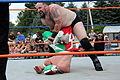 Wrestling coverleaf.jpg