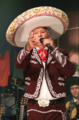 Zé da Estrada.png