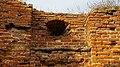 Zamek w Radzikach 1 6.jpg