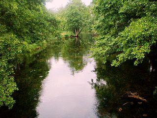Река Жяймяна у г. Калтаненай