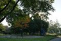 Zeromski Park, Na Skarpie Estate,Nowa Huta,Krakow,Poland.JPG