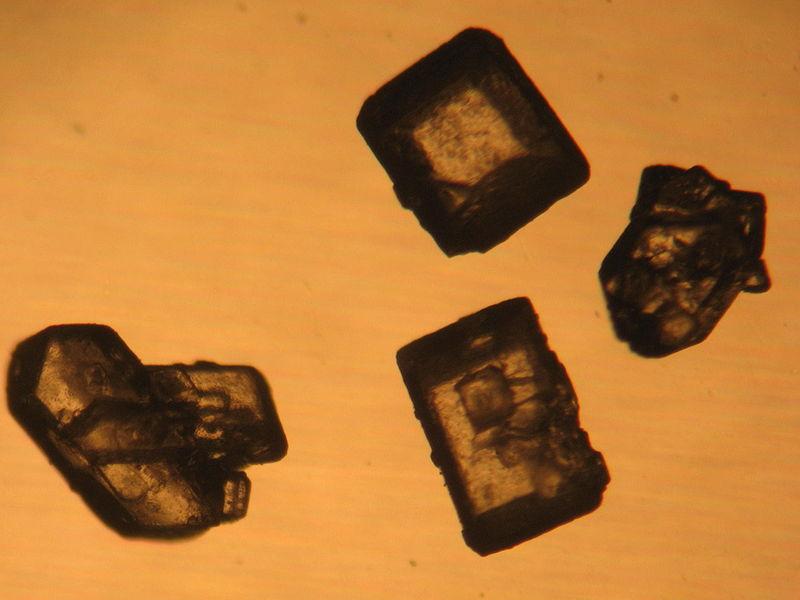 File:Zucker Kristall Mikroskop.JPG