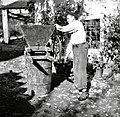 """""""Maln na vrni"""". Gospodar melje grozdje, Slap 1958.jpg"""