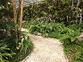 (Jardín Botánico de Quito) pic a2.JPG