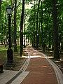 Аллея-парка-01.jpg