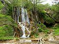 Бигарски водопад.jpg