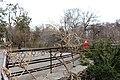 Ботанічний сад ім. акад. Фоміна IMG 4074.jpg