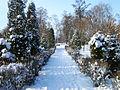 Ватутінський парк взимку!.JPG