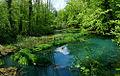 Вред зелен рай!.jpg